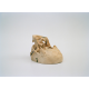 Sami skull used for educational purposes at Stockholm's Institute for Race Biology